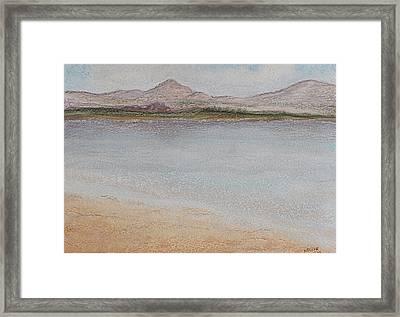 Salar Framed Print