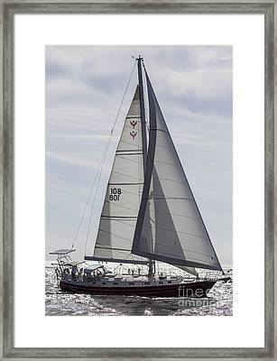 Saling Yacht Valkyrie Charleston Sc Framed Print by Dustin K Ryan
