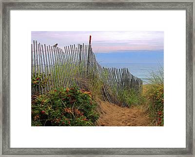 Salisbury Beach Framed Print