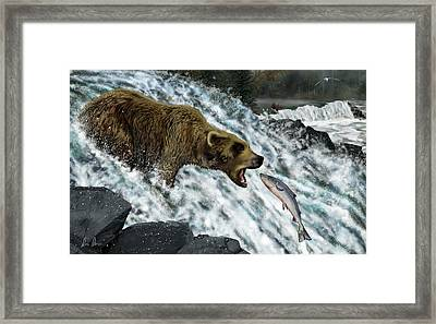Salmon Fishing Framed Print by Don Olea