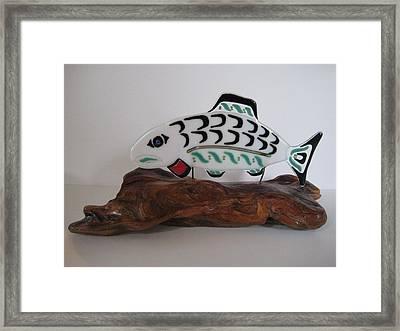 Salmon No1 Framed Print by Mark Lubich