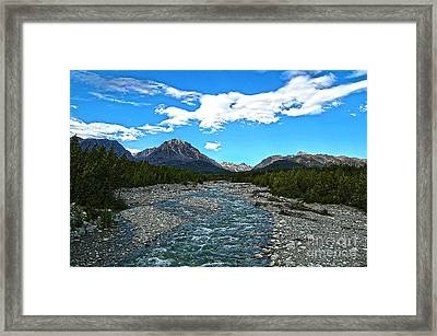 Salmon Run Framed Print