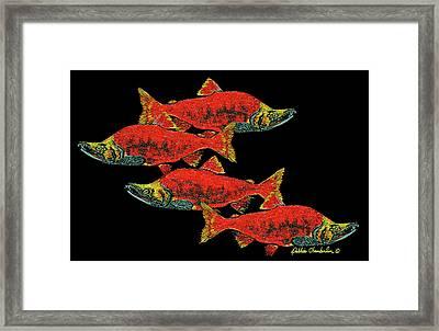 Salmon Season Framed Print
