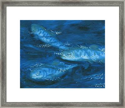 Salmon Swimming Framed Print by Tanna Lee M Wells