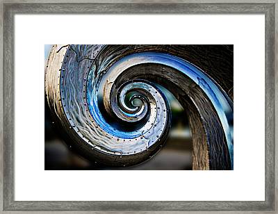 Salmon Waves 2 Framed Print by Pelo Blanco Photo