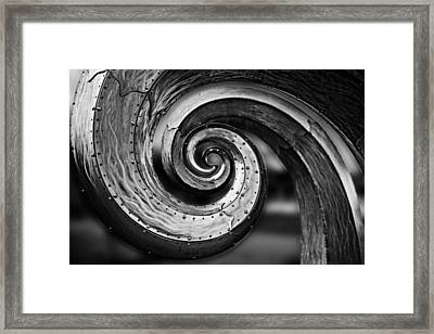 Salmon Waves Black And White 2 Framed Print by Pelo Blanco Photo