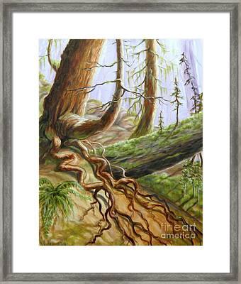 Saloompt Regional Park Framed Print