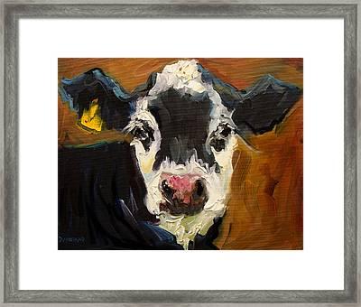 Salt And Pepper Cow Framed Print