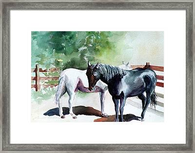 Salt And Pepper Horses Framed Print
