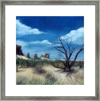 Salt Cedar At Arches Framed Print by Jan Amiss