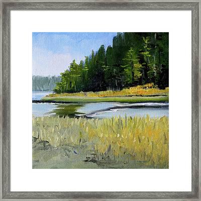 Framed Print featuring the painting Salt Creek by Nancy Merkle