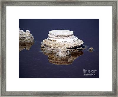 salt cristal at the Dead Sea Israel  Framed Print