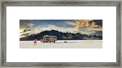 Salt Family Framed Print