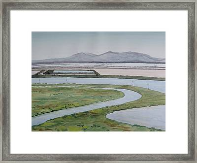 Salt Fields Framed Print by Bethany Lee
