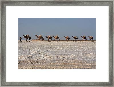 Salt Flats, Danakil Depression, Ethiopia Framed Print by Aidan Moran