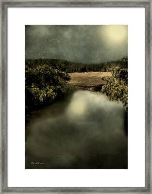 Salt Marsh Shimmer Framed Print by RC deWinter