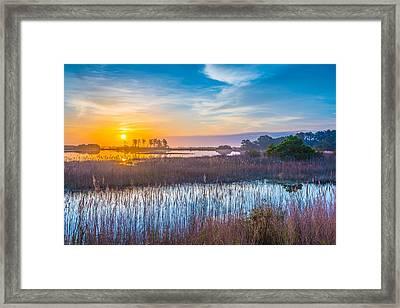 Salt Marsh Sunrise II Framed Print by Steven Ainsworth