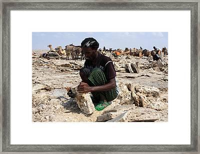 Salt Miner, Danakil Depression, Ethiopia Framed Print by Aidan Moran