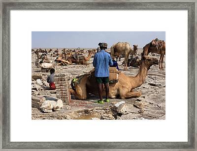 Salt Miners Of The Danakil Framed Print by Aidan Moran
