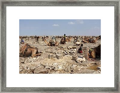 Salt Miners Of The Desert Framed Print by Aidan Moran