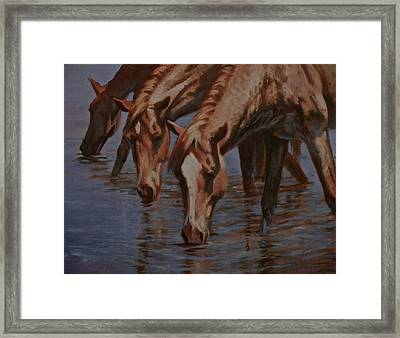 Salt River Redheads Framed Print by Mia DeLode