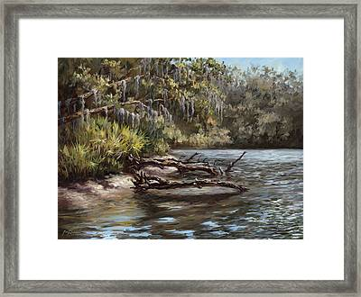 Salt Springs Run Framed Print