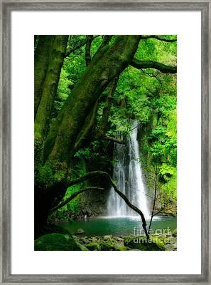 Salto Do Prego Waterfall Framed Print by Gaspar Avila