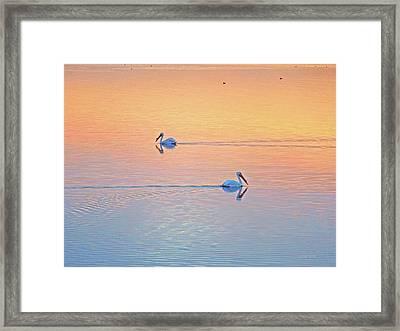 Salton Saunterers Framed Print