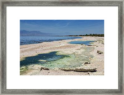 Salton Sea Beach Framed Print by Kelley King