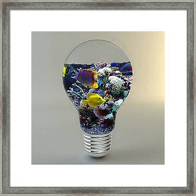 Saltwater Aquarium Light Bulb Framed Print