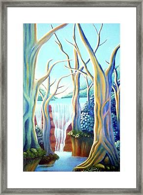 Saltwater Falls 2 Framed Print by Barbara Stirrup