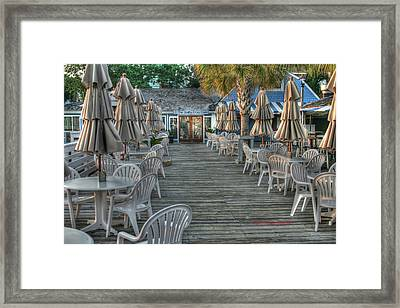 Salty Dog Framed Print