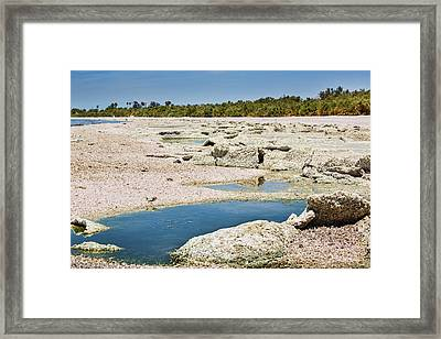 Salty Sand Framed Print
