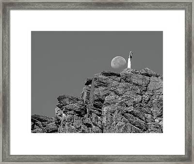 Salutation Framed Print