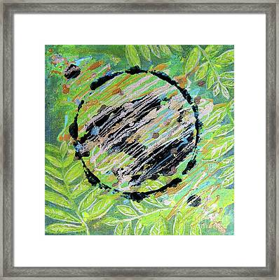 Salute To Mother Earth Framed Print by Desiree Paquette
