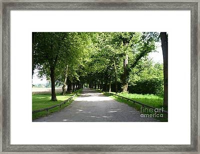 Salzburg Lane Framed Print by Carol Groenen