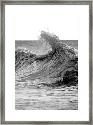 Samarai Framed Print by Brad Scott