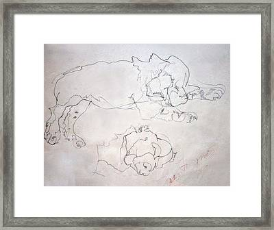 Sammy As A Pup Framed Print by Joan  Jones