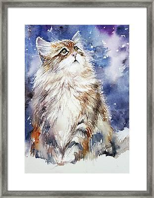 Sammy On Snow Framed Print