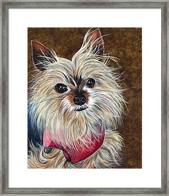 Sammy Framed Print by Twyla Francois