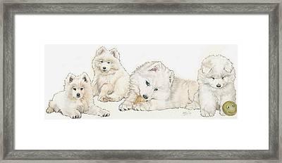 Samoyed Puppies Framed Print by Barbara Keith
