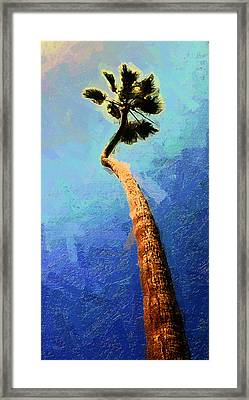 San Clemente Beach Palm Framed Print