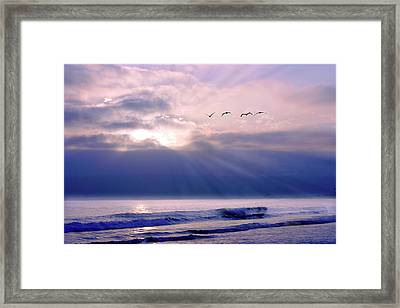 San Diego Sunset 2 Framed Print by Alan Hausenflock