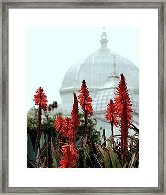 San Francisco Conservatory Of Flowers In Golden Gate Park . 7d5799 Framed Print
