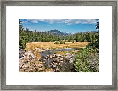 San Joaquin River Scene Framed Print