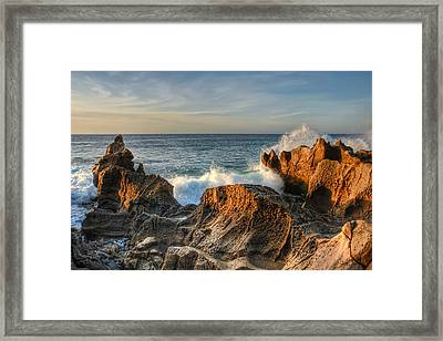 San Jose Del Cabo Early Morning Framed Print by Rich Beer