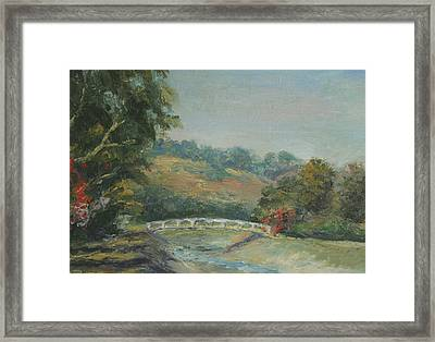 San Juan Creek Framed Print