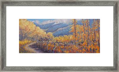 San Juan Mountain Gold Framed Print