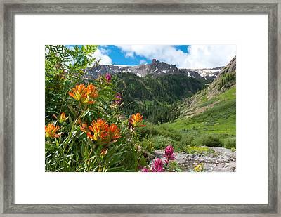 Framed Print featuring the photograph San Juans Indian Paintbrush Landscape by Cascade Colors