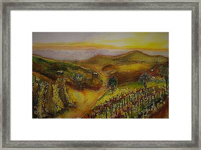 San Pasqual Valley At Sunset Framed Print
